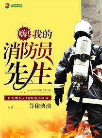 我的消防员先生